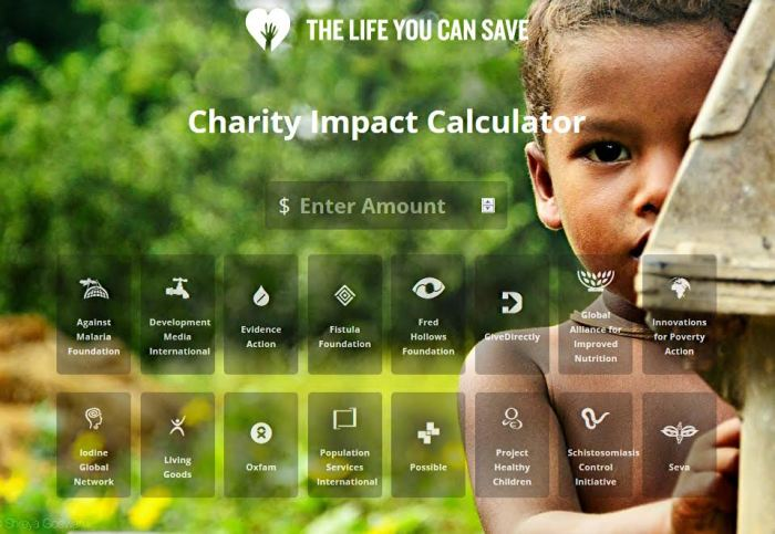Calculadora de Impacto da Caridade | The Life You Can Save
