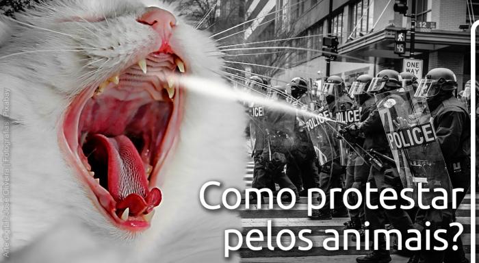 Protesto animal_L